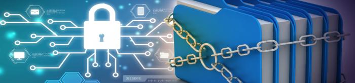 Saiba quais são os 4 princípios da Segurança da Informação